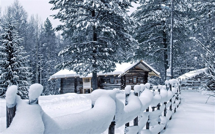 Cold winter landscape Desktop Wallpapers Views:29345