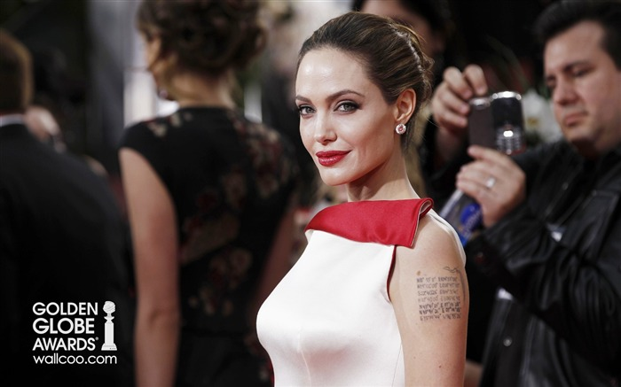 Angelina Jolie beautiful actress HD photo wallpaper 03 Views:4403