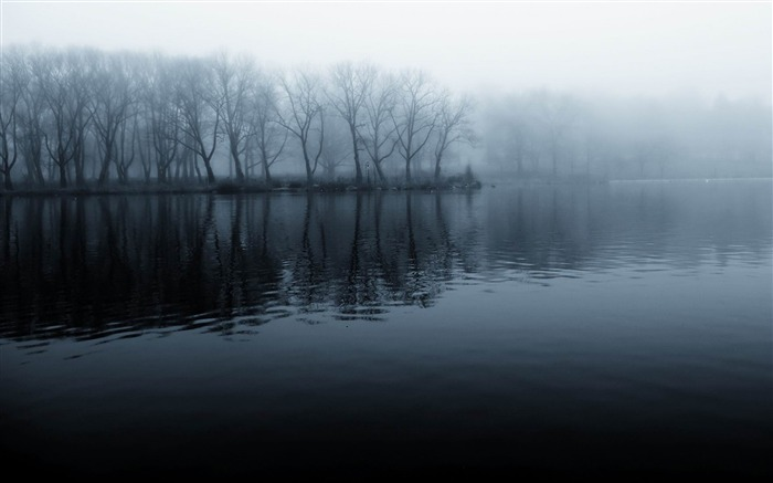 Foggy Morning-beautiful natural landscape Wallpaper Views:9698 Date:1/20/2013 9:46:44 PM