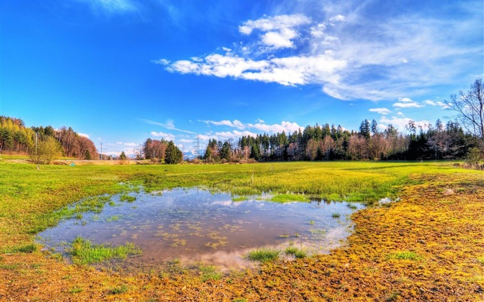 HDR flooded meadow-Beautiful scenery wallpaper Views:4510