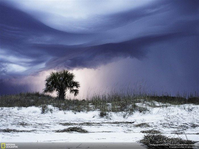 Lightning Storm-2012 National Geographic Photography Wallpaper Views:4955