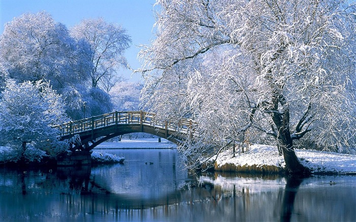 The Winter Bridge through a Lake-beautiful natural landscape Wallpaper Views:21722 Date:1/20/2013 9:54:51 PM
