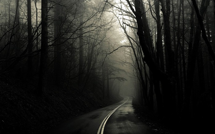 dark road through woods-amazing natural scenery wallpaper Views:45720 Date:1/5/2013 10:36:49 PM