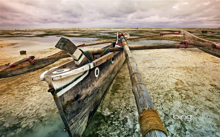 Canoe-2013 Bing widescreen wallpaper Views:5866
