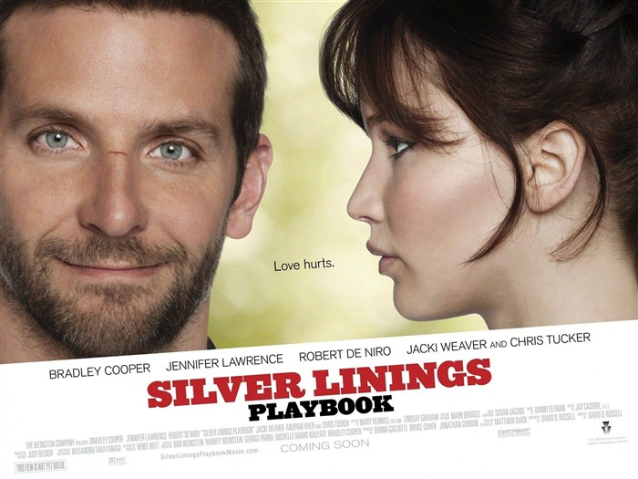 Silver Linings Playbook-2013 Oscar Academy Awards-Best Film nomination Wallpaper 01 Views:2507