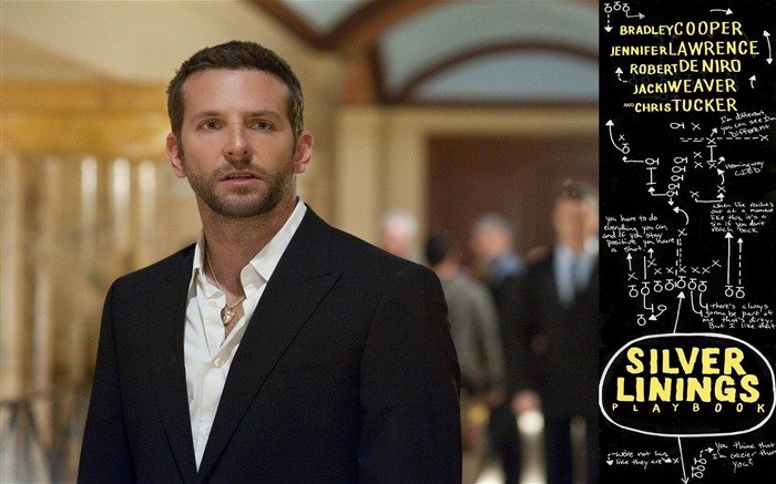 Silver Linings Playbook-2013 Oscar Academy Awards-Best Film nomination Wallpaper 02 Views:2414