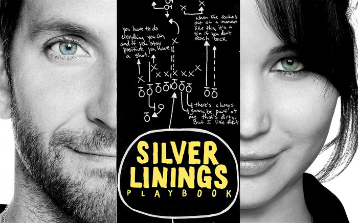 Silver Linings Playbook-2013 Oscar Academy Awards-Best Film nomination Wallpaper Views:4054