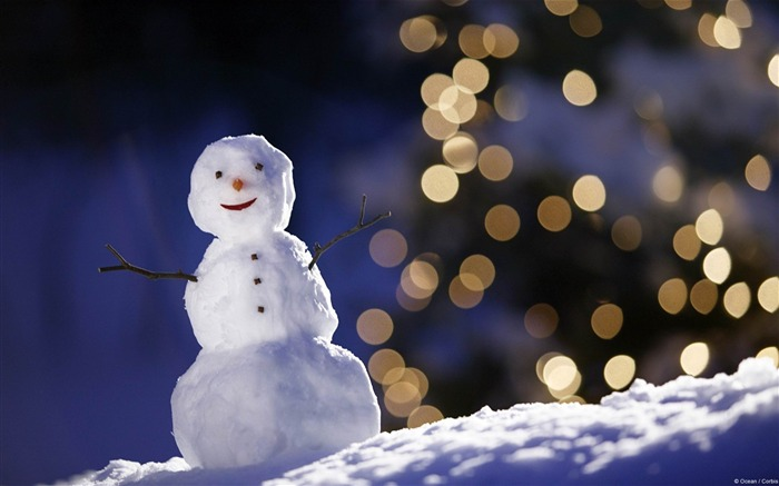 The snowman and flashing lights-Microsoft Windows Desktop Wallpaper Views:9303 Date:2/4/2013 1:24:39 AM