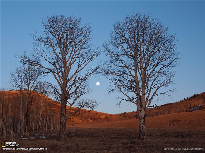 Moonrise Colorado-National Geographic wallpaper Views:5406