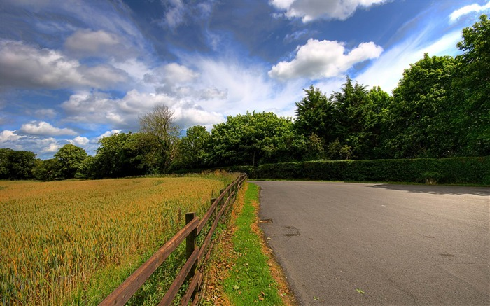 countryside road-Natural landscape widescreen Wallpaper Views:7445 Date:3/24/2013 7:53:37 PM