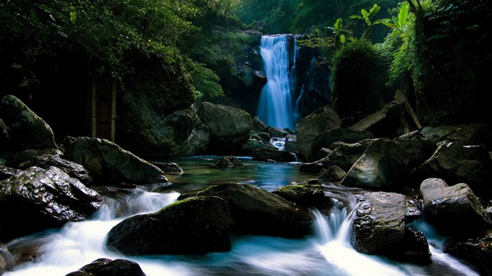 forest waterfall-Natural landscape widescreen Wallpaper Views:4081 Date:3/24/2013 7:54:40 PM