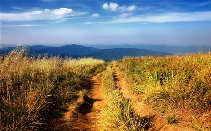 hiking path-Natural landscape widescreen Wallpaper Views:4930 Date:3/24/2013 7:55:20 PM