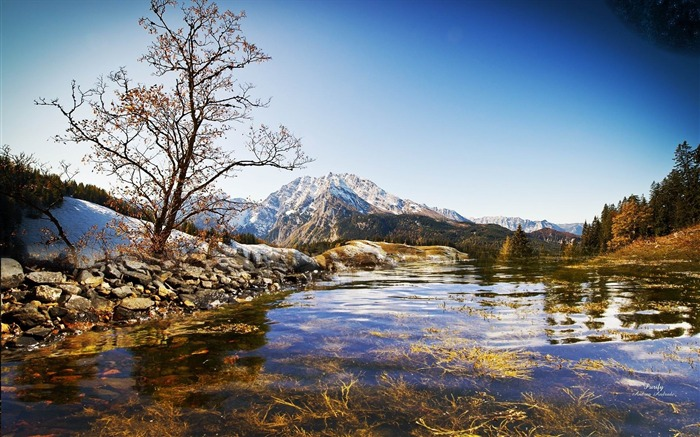 spring natural scenery hd - photo #39