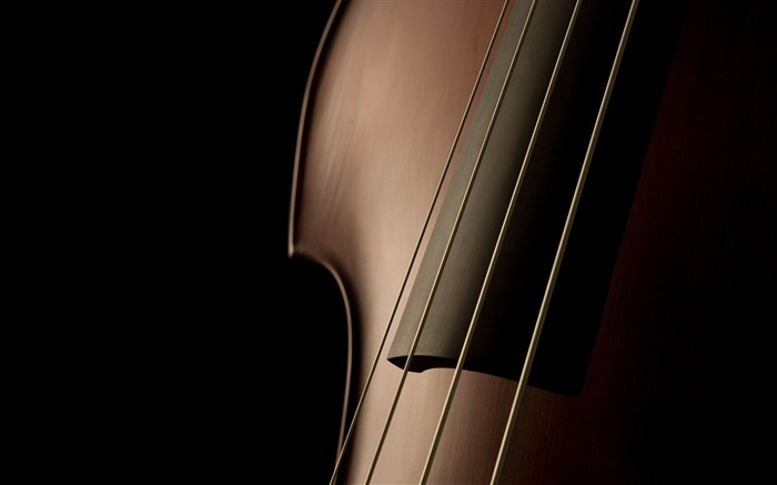 cello close up-Photography widescreen wallpaper Views:13214 Date:4/30/2013 11:18:08 PM