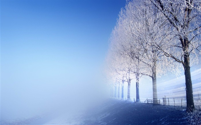 winter trees-creative design HD wallpaper Views:2828