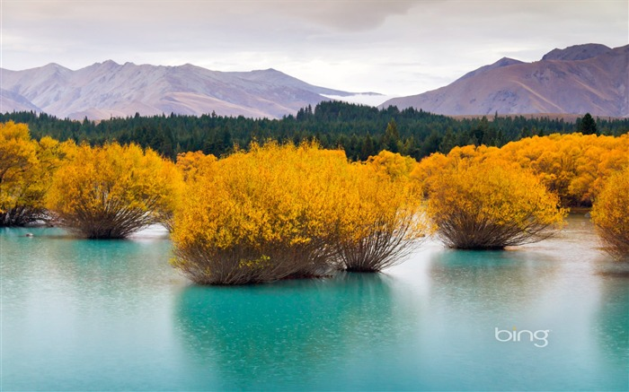 May 2013 Bing official theme widescreen wallpaper Views:17305