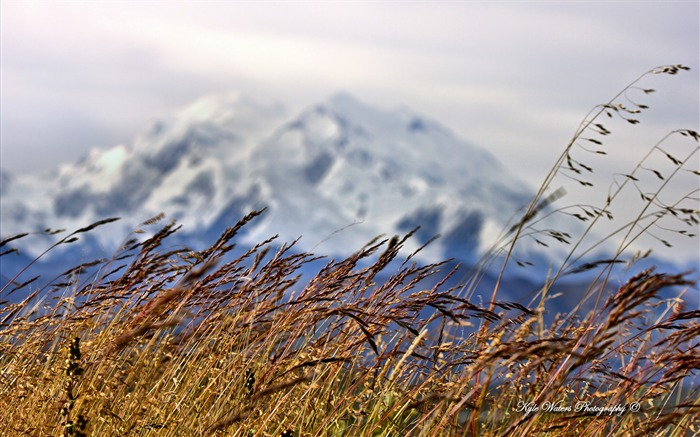 Beautiful Alaska natural scenery desktop wallpaper 06 Views:5428 Date:5/6/2013 10:31:56 PM