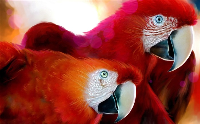Red parrot-Animal World Photography Wallpaper Views:4533 Date:5/1/2013 11:59:05 PM