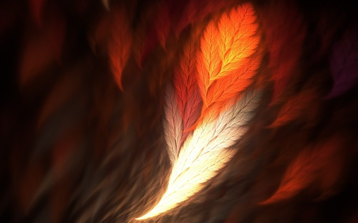 feather art-May HD quality wallpaper Views:3760