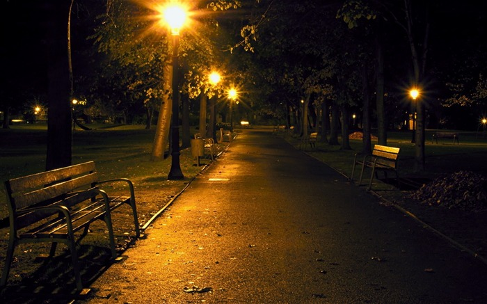 city night park benches-city photography HD Wallpaper Views:3848
