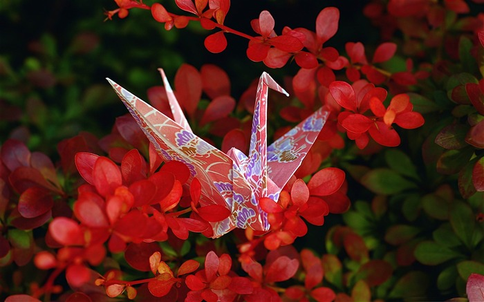 red origami-Macro photography wallpaper Views:5523