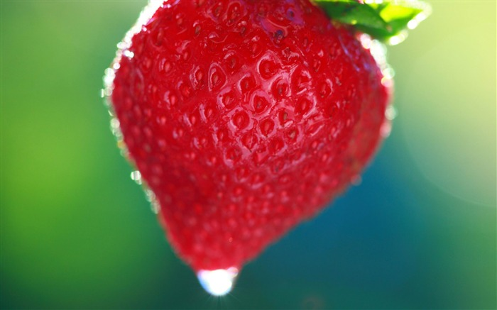 sweet summer strawberry-Macro photography wallpaper Views:3253