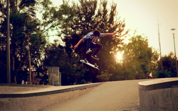 trees skateboard-Sports HD Widescreen Wallpaper Views:3751 Date:6/23/2013 11:47:34 AM