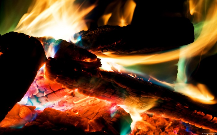 Firewood-Windows themes wallpaper Views:6174 Date:7/6/2013 5:44:03 PM