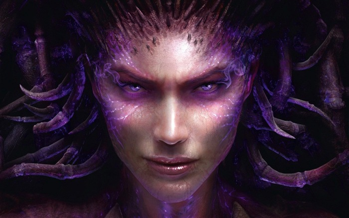 Sarah Kerrigan Starcraft 2-2013 Game HD Wallpaper Views:5732