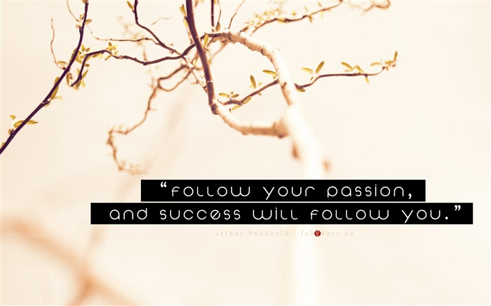 arthur buddhold success quote-Abstract design HD wallpaper Views:3184