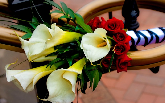 roses calla lilies-Flowers Photos Wallpaper Views:3390