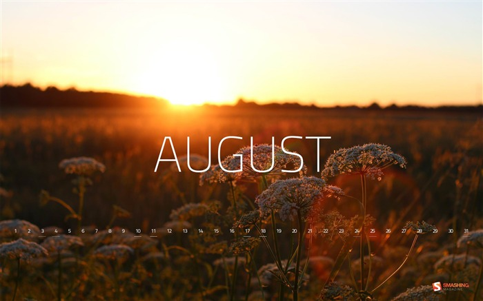 August 2013 calendar desktop themes wallpaper Views:14784
