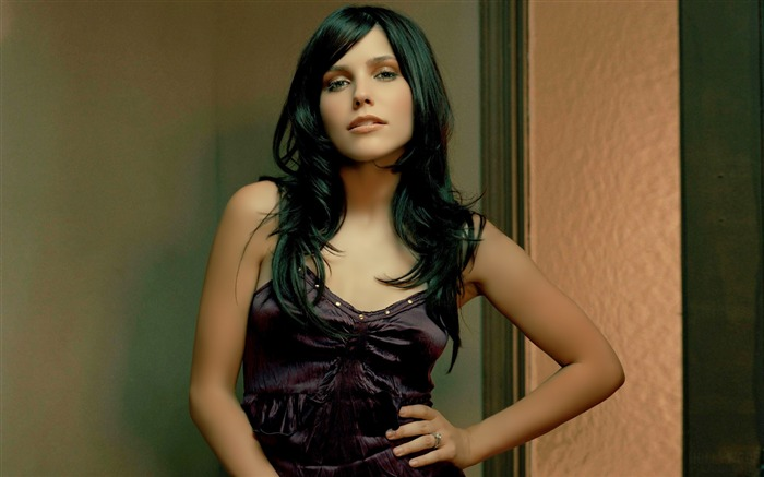 Sophia Bush beauty photo HD wallpaper 03 Views:3349