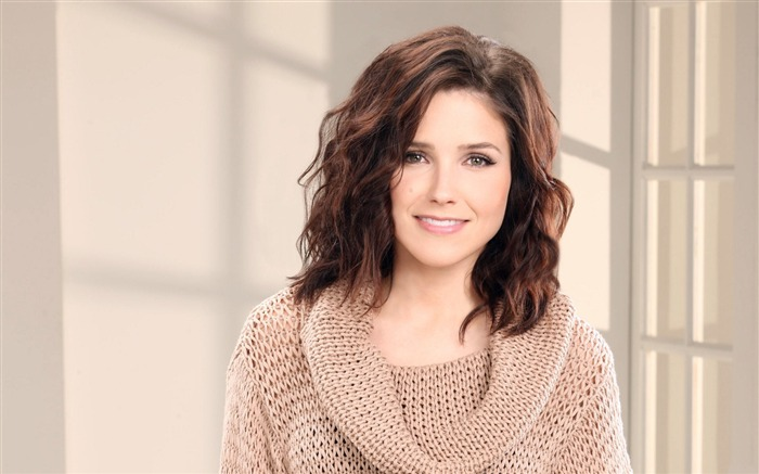 Sophia Bush beauty photo HD wallpaper 07 Views:3484