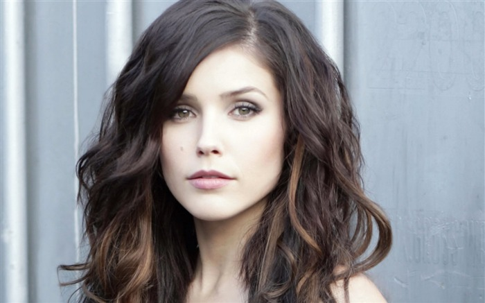 Sophia Bush beauty photo HD wallpaper 09 Views:3389