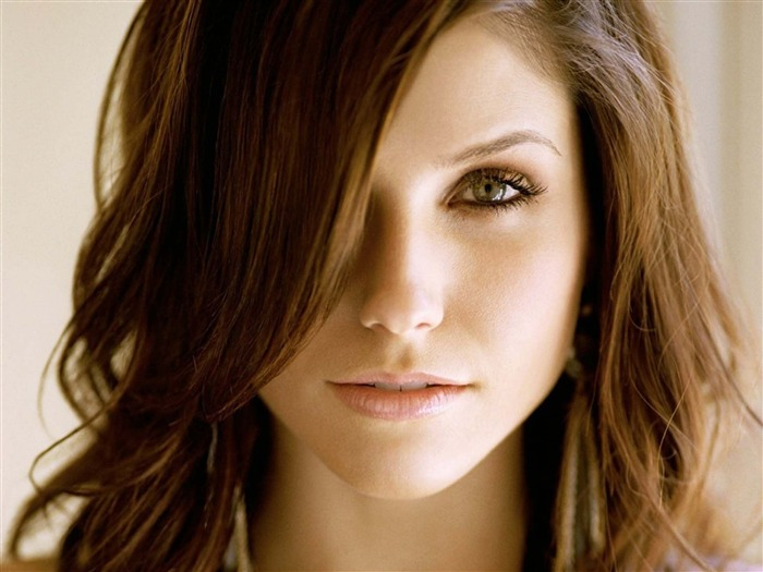 Sophia Bush beauty photo HD wallpaper 18 Views:1903