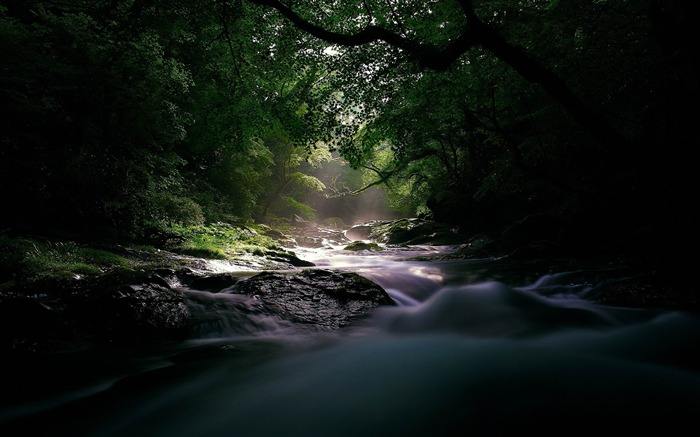 river stream current light uncertainty wood-landscape HD wallpaper Views:3508