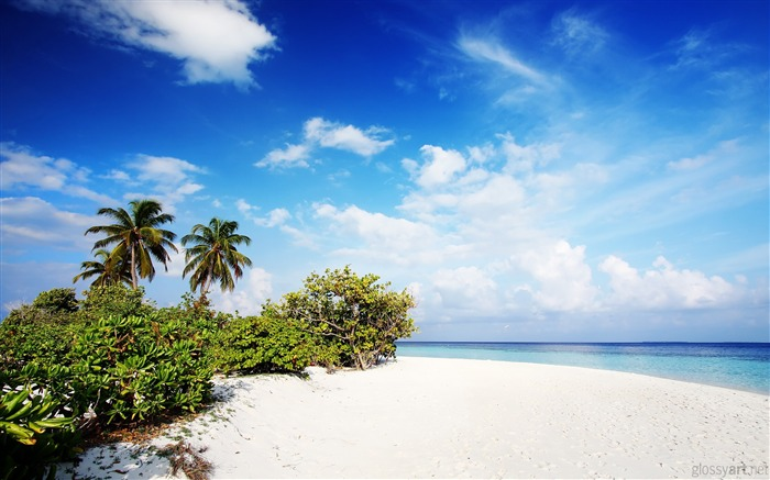 Beach Landscape-Nature HD wallpaper Views:6561 Date:9/7/2013 3:37:21 PM