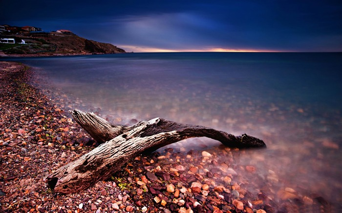 driftwood-ocean Landscape wallpaper Views:4311