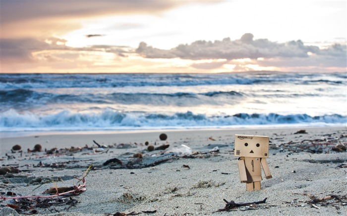 Autumn on the beach-Danbo Photography Wallpaper Views:3717