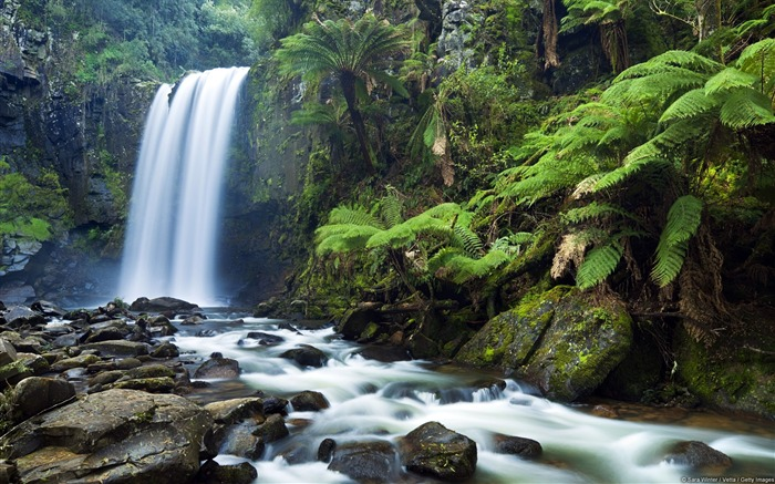 Hopetoun Falls-Windows Nature Wallpaper Views:5084