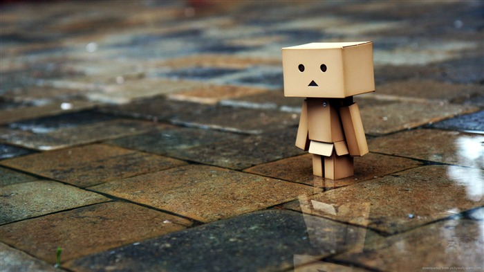 The streets after the rain-Danbo Photography Wallpaper Views:4254