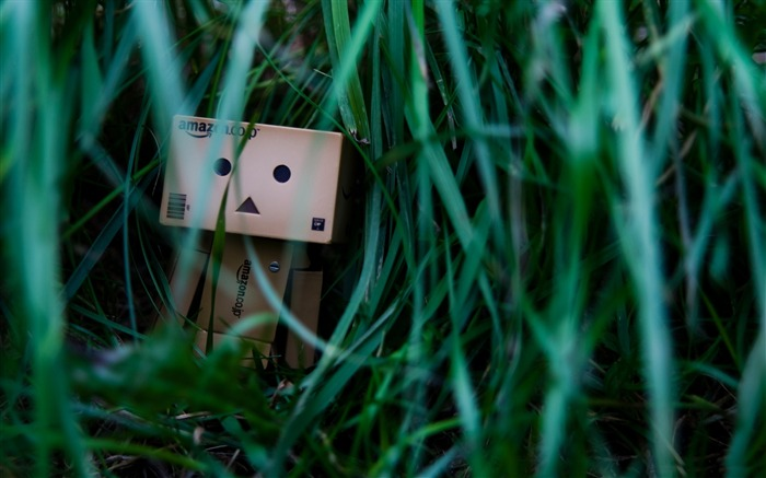 sometimes its lonely-Danbo Photography Wallpaper Views:3849