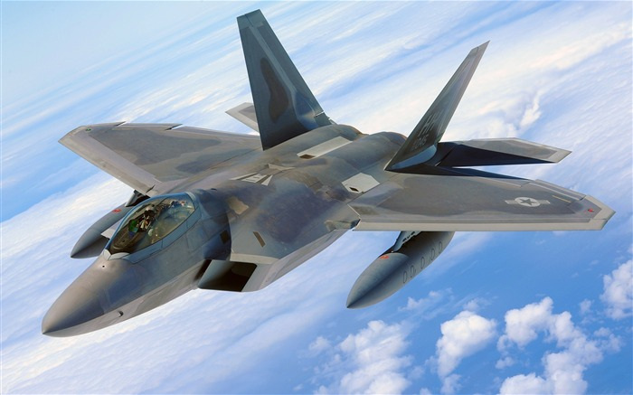 Military aviation fighter Widescreen Wallpaper 08 Views:3292
