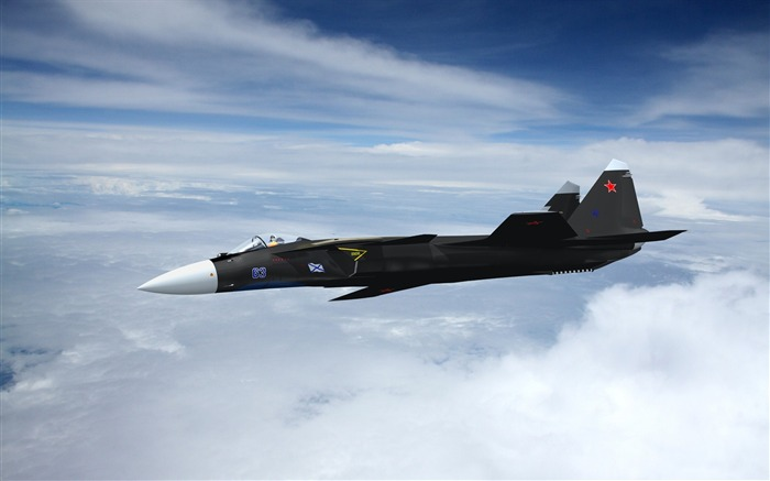 Military aviation fighter Widescreen Wallpaper 10 Views:3442