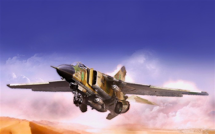 Military aviation fighter Widescreen Wallpaper 11 Views:3435