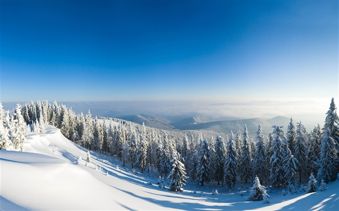 mountains snow trees slope-Nature HD Wallpaper Views:6566 Date:11/14/2013 9:08:46 AM