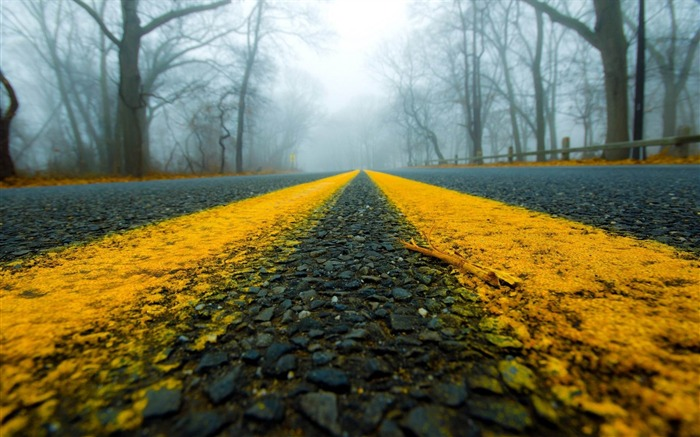 road close-up mist-Nature HD Wallpapers Views:6651 Date:11/14/2013 9:19:55 AM