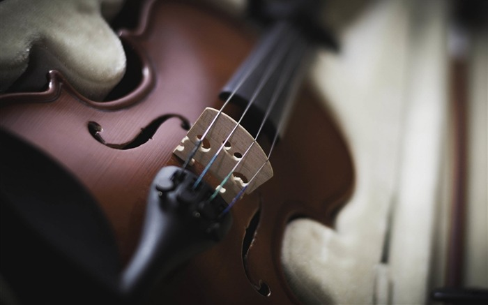 violin instrument-Music HD Wallpaper Views:2502