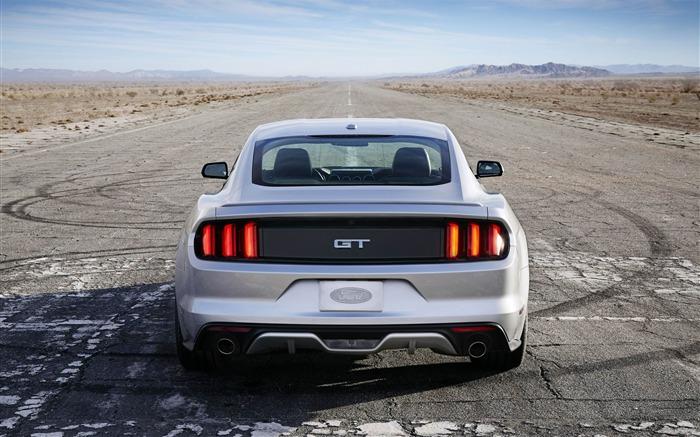 2015 Ford Mustang Gt Car Hd Fondo De Pantalla Lista De Albumes Pagina1 10wallpaper Com